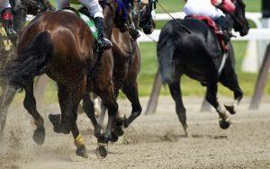wyścigi konne u bukmachera