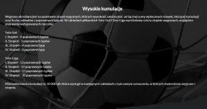 screen regulaminu zakładów Toto-Liga i Toto Gol